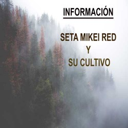 MIKEI RED Y CULTIVO